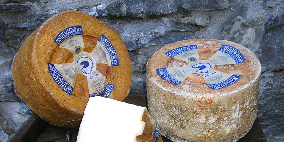 formaggio castelmagno dop