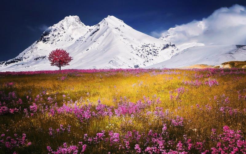 valle con montagne